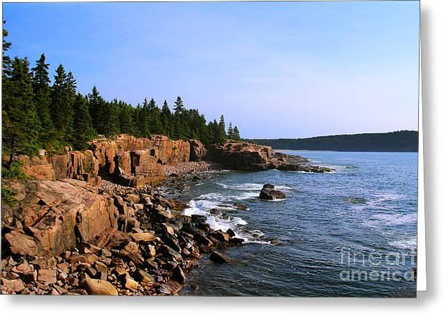 Acadia Coast Greeting Card