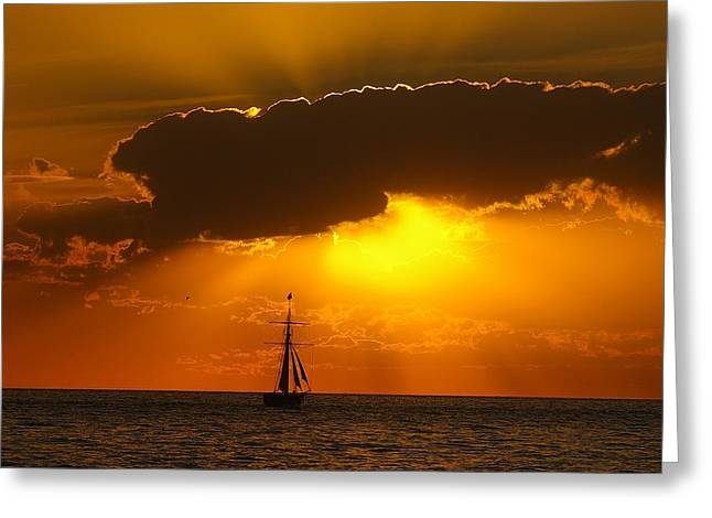 Greeting Card featuring the photograph After The Storm by Randy Pollard