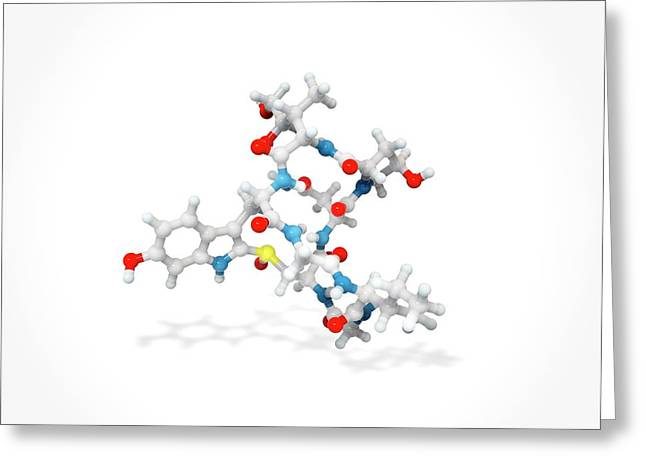 Alpha-amanitin Toxin Molecule Greeting Card