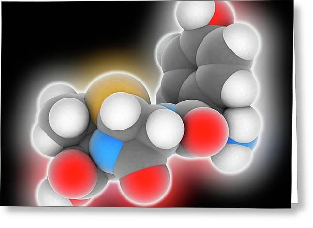 Amoxicillin Drug Molecule Greeting Card by Laguna Design