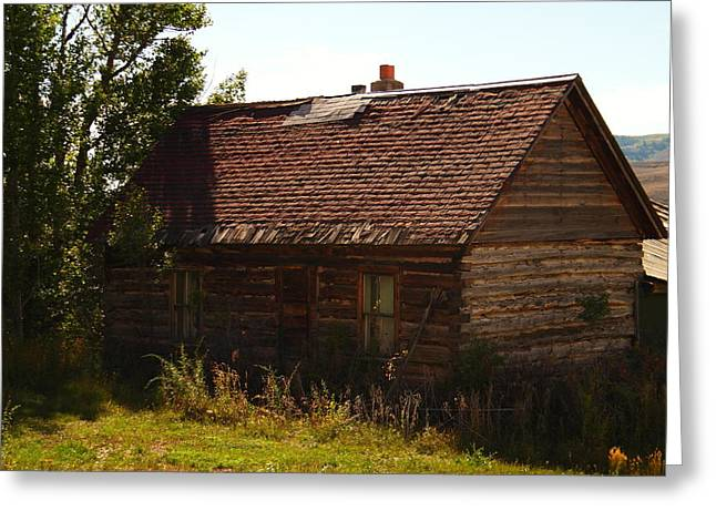 An Old Cabin In Utah Greeting Card by Jeff Swan