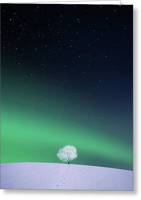 Apple Greeting Card by Bess Hamiti