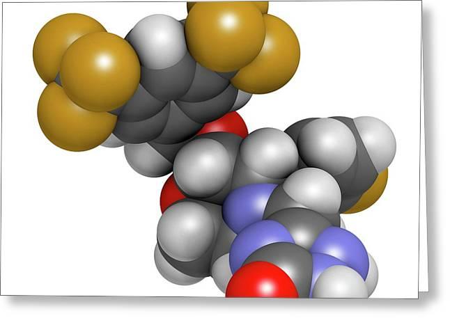 Aprepitant Antiemetic Drug Molecule Greeting Card by Molekuul
