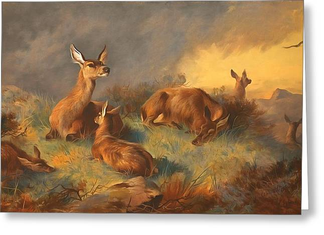 The Watchful Hinds Deer Greeting Card