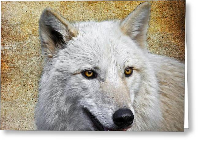 Arctic White Wolf  Greeting Card by Steve McKinzie