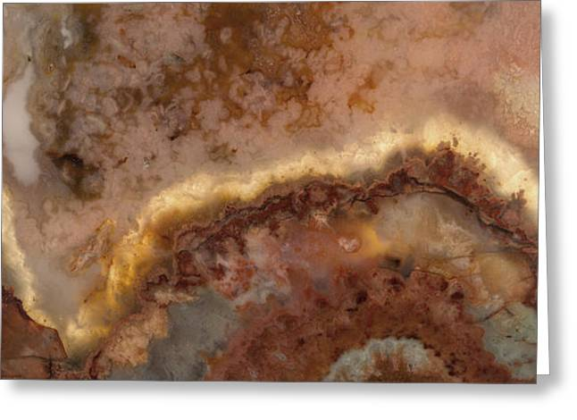 Art In Nature Greeting Card by Leland D Howard