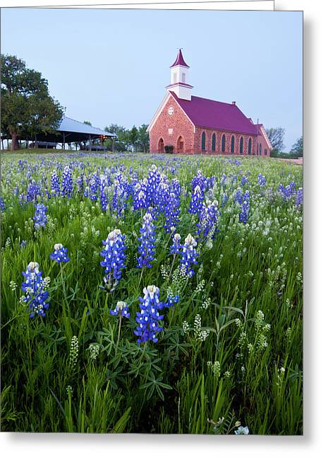 Art Methodist Church And Bluebonnets Greeting Card by Larry Ditto