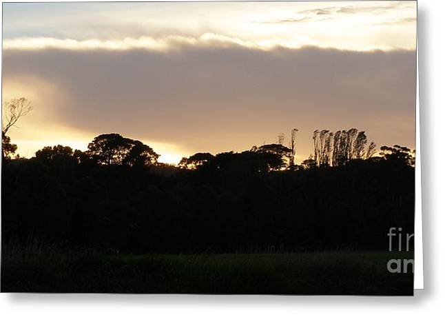 Australian Sunrise Greeting Card by Bev Conover