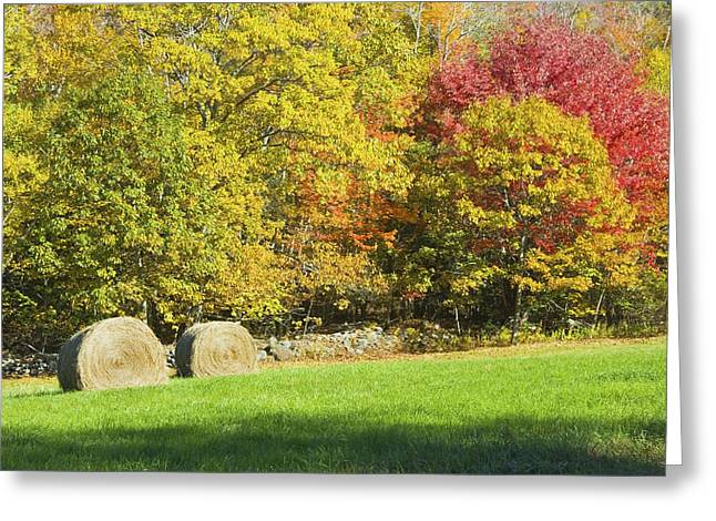 Autumn Hay Being Harvested In Maine Greeting Card by Keith Webber Jr