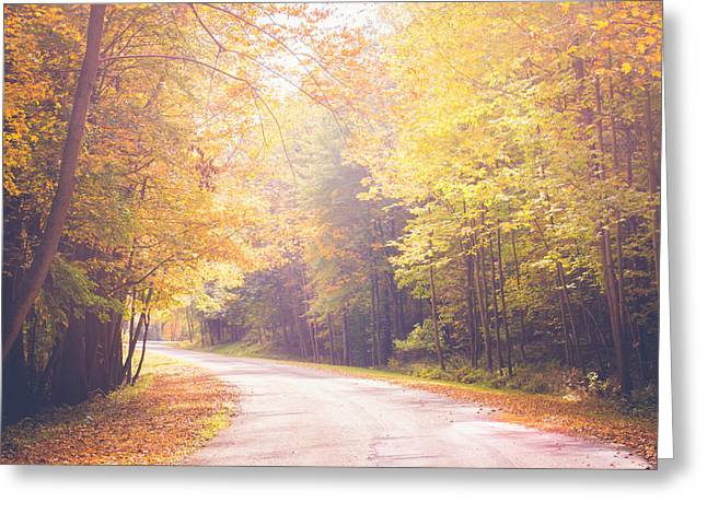 Autumn Light Greeting Card by Sara Frank
