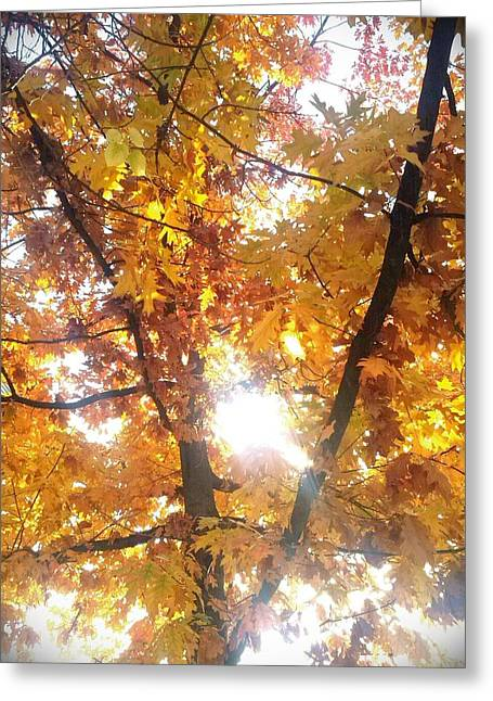 Autumn Greeting Card by Nathalie Hope
