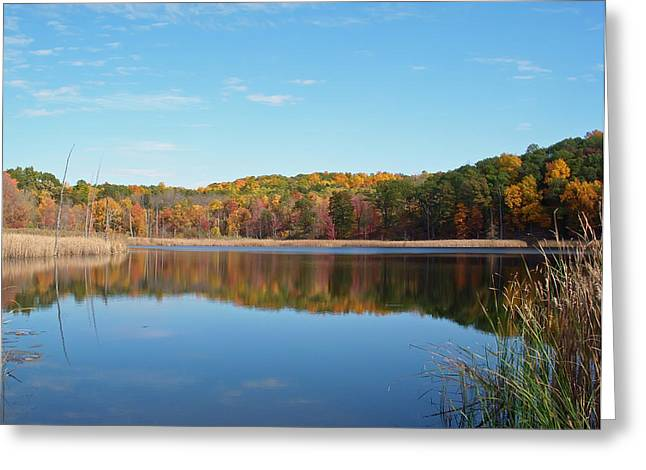 Autumn Pond Greeting Card by Aimee L Maher Photography and Art Visit ALMGallerydotcom