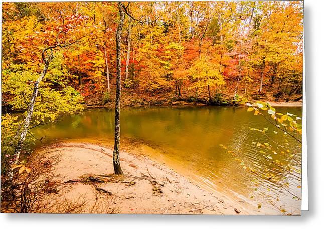 Autumn Season At A Lake Greeting Card by Alex Grichenko