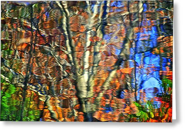 Autumnal Abstracious Greeting Card by Frozen in Time Fine Art Photography