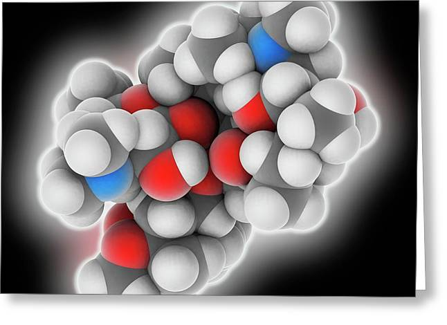 Azithromycin Drug Molecule Greeting Card