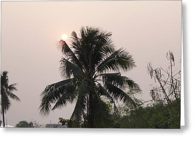 Beautiful Evening Greeting Card by Gornganogphatchara Kalapun