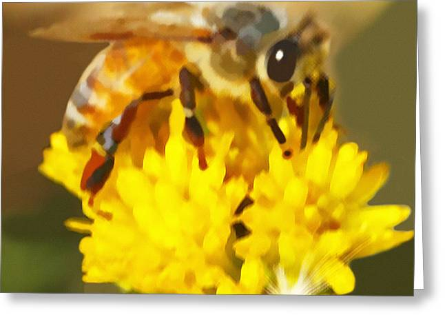 Bee On A Yellow Flower Greeting Card
