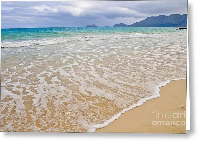 Bellows Beach Greeting Card by Gina Savage