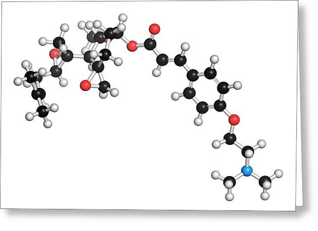 Beloranib Obesity Drug Molecule Greeting Card