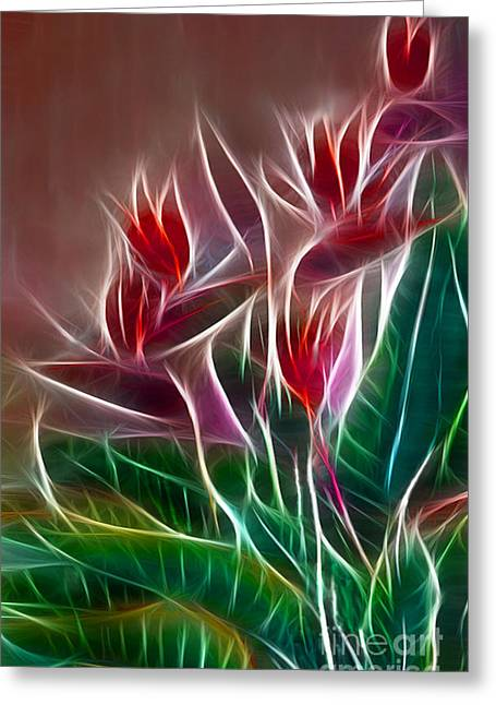 Bird Of Paradise Fractal Greeting Card