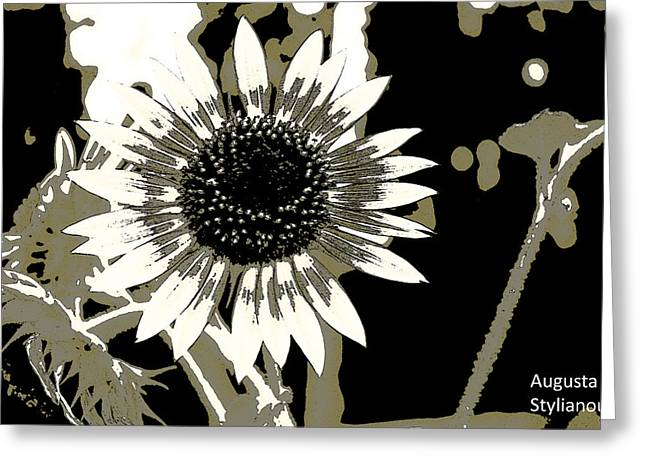 Black And White Flowers Greeting Card by Augusta Stylianou
