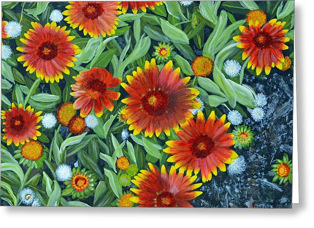 Blanket Flowers Greeting Card by Donna  Manaraze