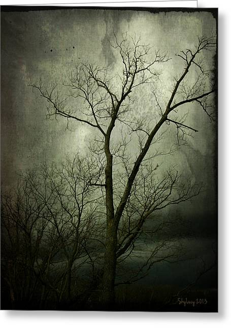 Greeting Card featuring the photograph Bleak by Cynthia Lassiter
