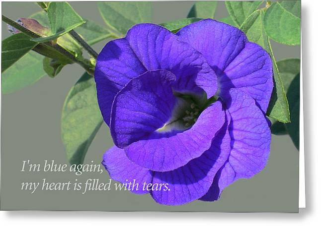 Blue Again Greeting Card by James Temple
