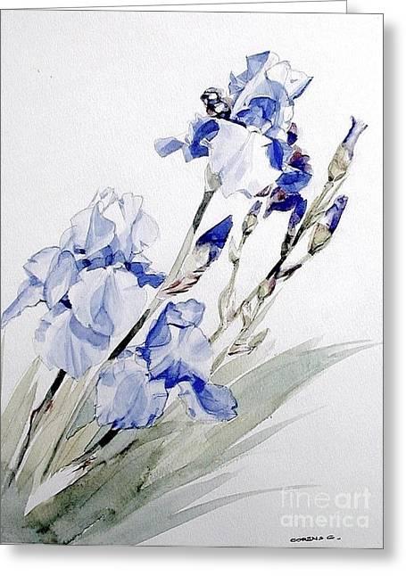 Blue Irises Greeting Card