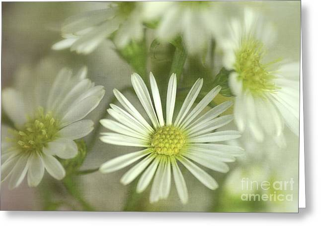 Bouquet Of White And Green Greeting Card by Julie Palencia