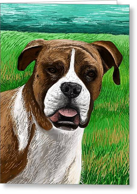 Boxer Greeting Card by Heidi Creed