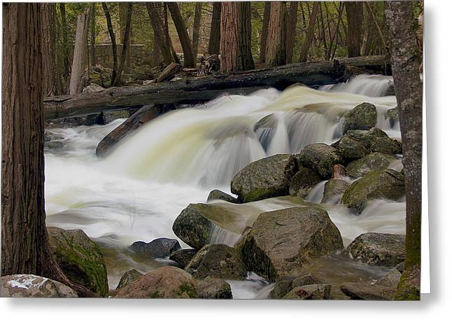 Bridalveil Creek Greeting Card