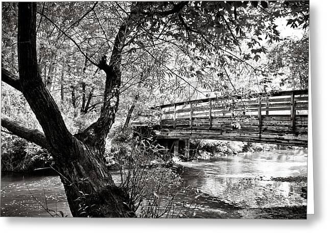 Bridge At Ellison Park Greeting Card by Sara Frank