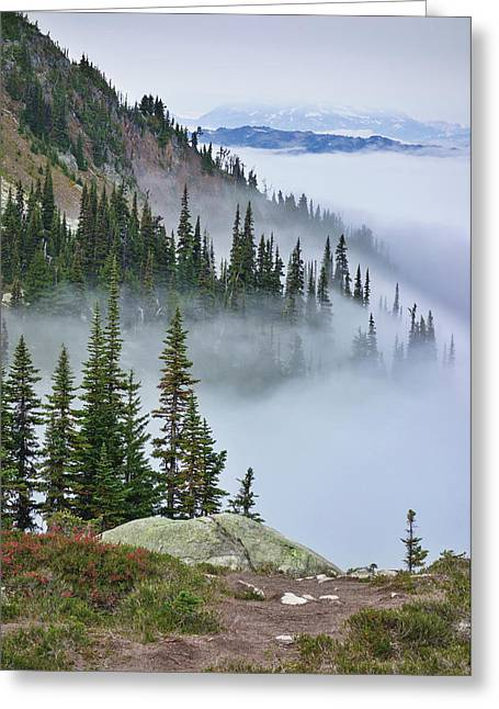 British Columbia, Whistler Greeting Card by Matt Freedman