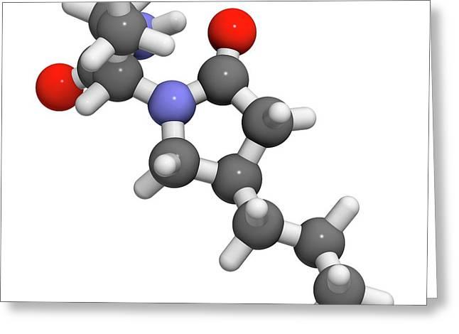 Brivaracetam Anticonvulsant Drug Molecule Greeting Card by Molekuul