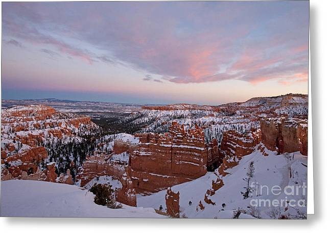 Bryce Canyon National Park Utah Greeting Card by Jason O Watson