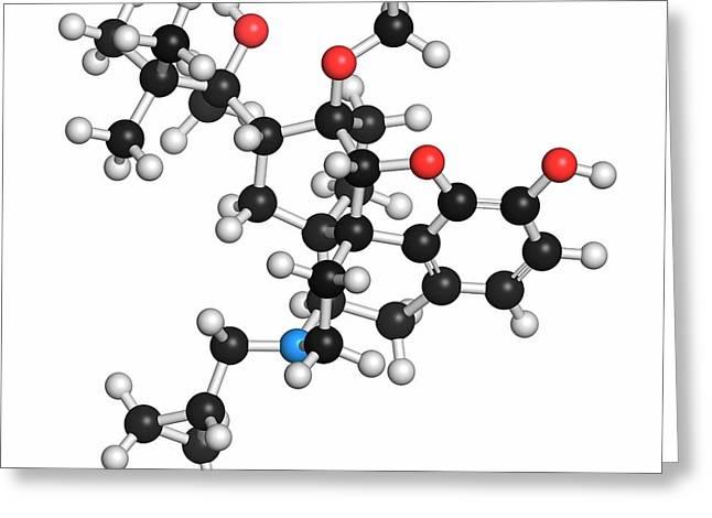 Buprenorphine Opioid Drug Molecule Greeting Card by Molekuul