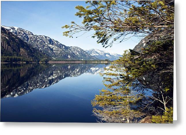 Buttle Lake Greeting Card