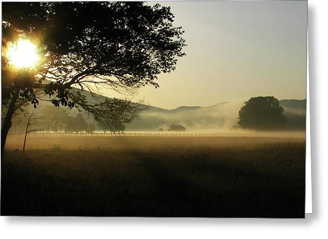 Cades Cove Sunrise II Greeting Card by Douglas Stucky