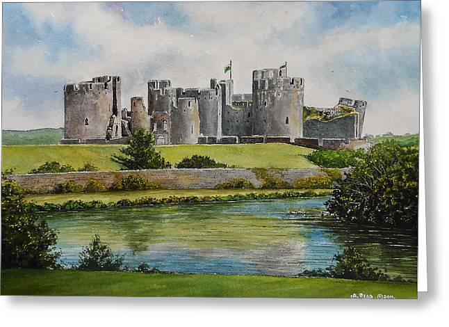 Caerphilly Castle  Greeting Card by Andrew Read