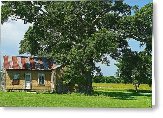 Cajun Home Greeting Card by Ronald Olivier
