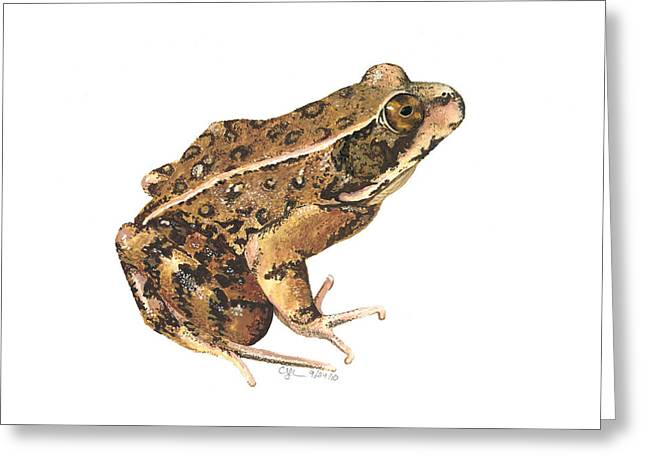 California Red-legged Frog Greeting Card