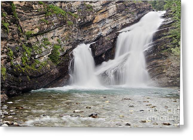 Cameron Falls Greeting Card by Dee Cresswell