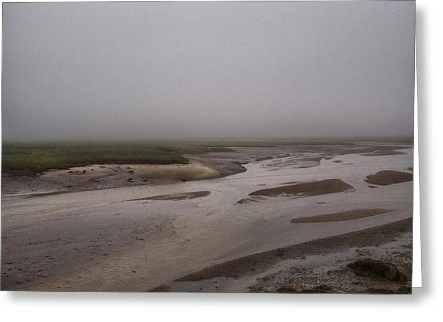 Cape Cod Marsh Greeting Card