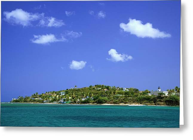 Caribbean, Puerto Rico, Viegues Island Greeting Card