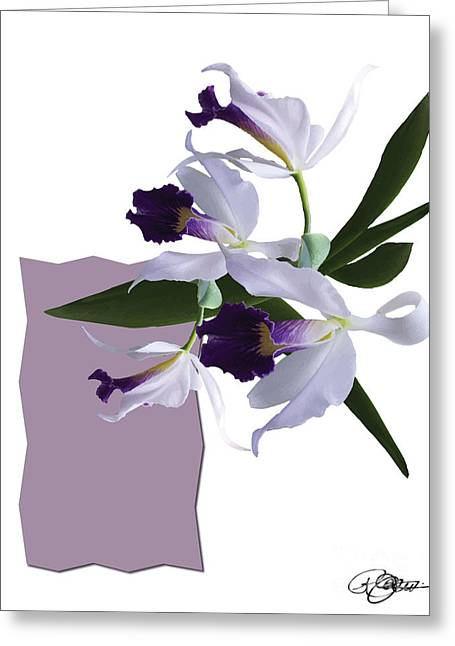 Cattleya Valentine Triage Dafoi Art 3 Of 3 Greeting Card