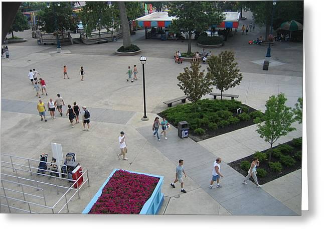 Cedar Point - 12129 Greeting Card