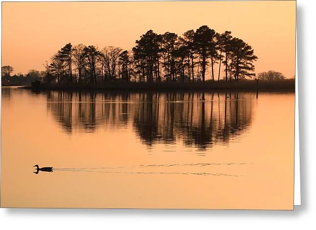 Chesapeake Sunset Greeting Card