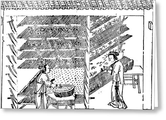 China Silk Manufacture Greeting Card