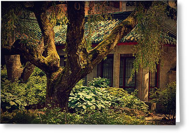 Chinese Garden Greeting Card by Maria Angelica Maira